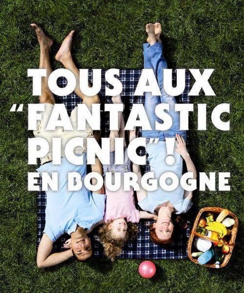fantastic_picnic-chic-bourgogne-mimi-canette